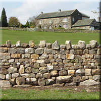Restoration of derelict field wall, North Yorkshire