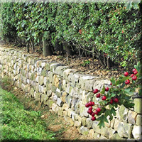 Retaining wall between client's garden and the road